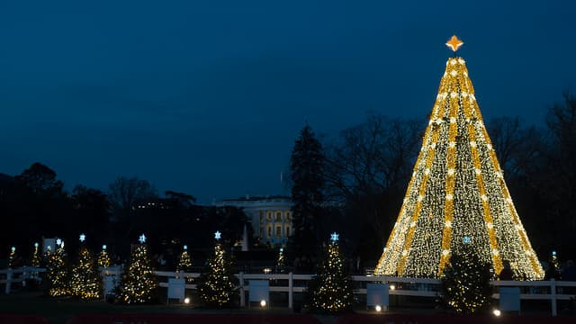 National Christmas Tree in Washington (USA)